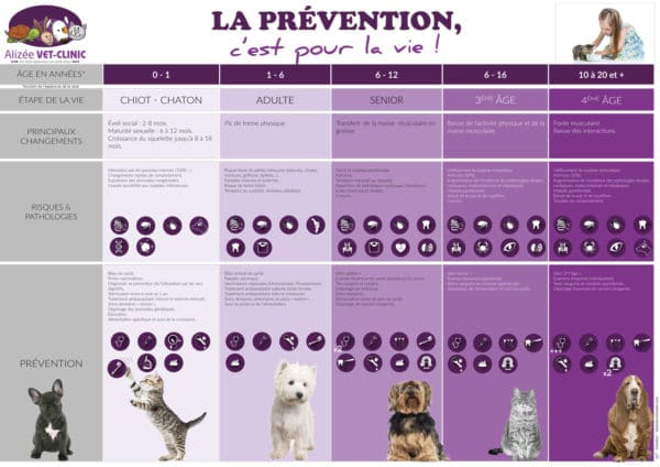Affiches-veterinaire-Alizee-prévention-HD