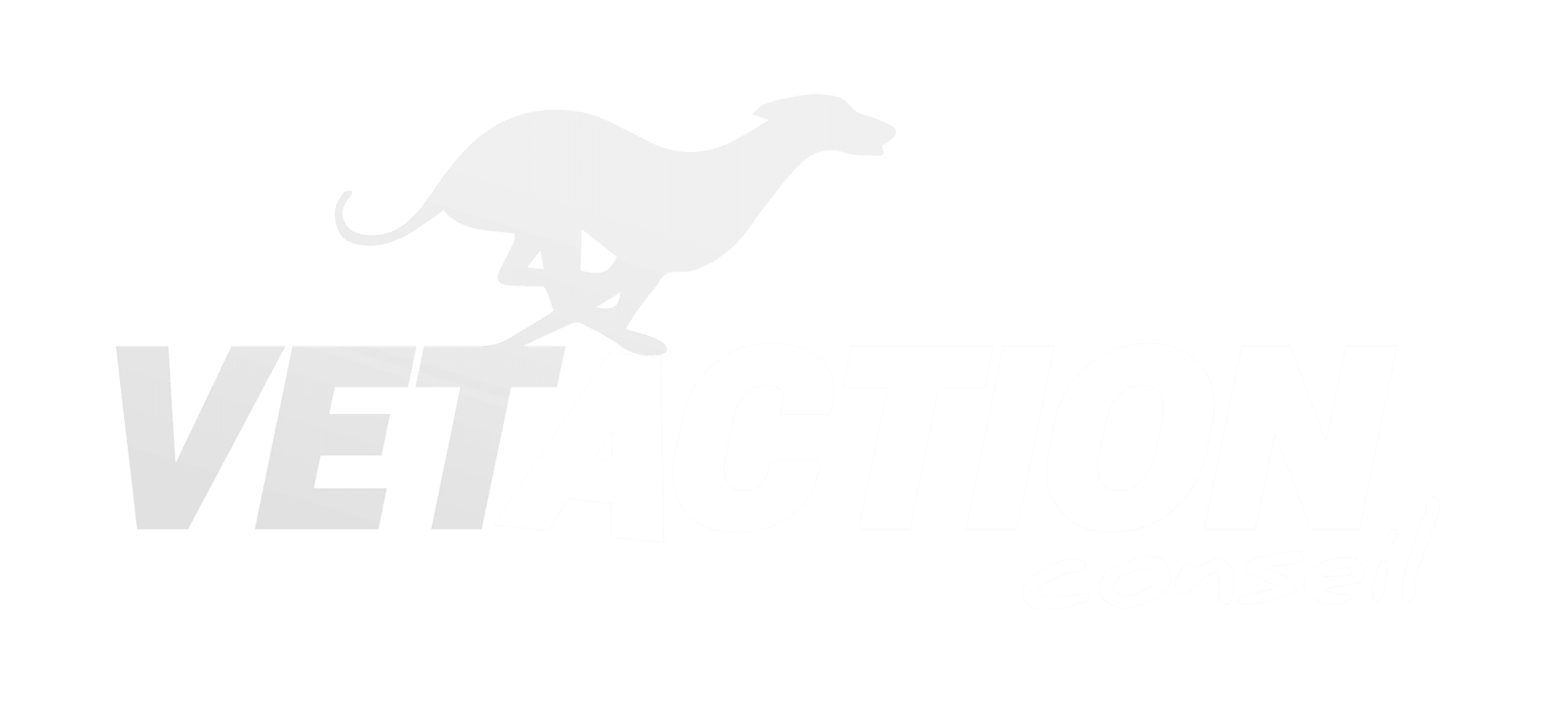 Vetaction Conseil