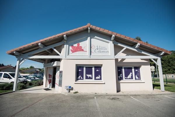 Autocollants-veterinaire-vitrine-clinique veterinaire des coquelicots-01-Lagnieu