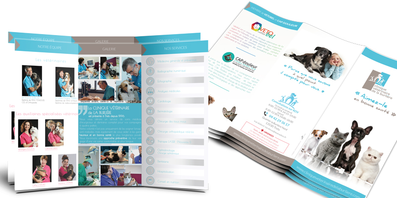 Brochure-clinique-veterinaire-communication