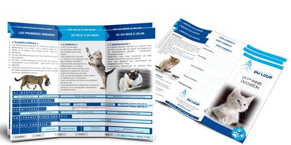 Leaflet-veterinaire-chaton