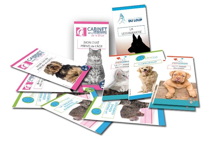 Pathologies-veterinaires-depliants
