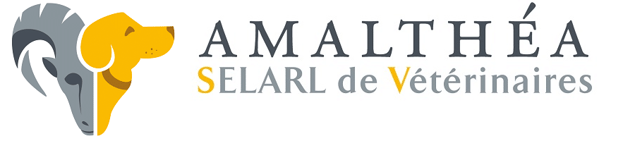Logo-veterinaire-amalthea