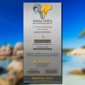 Plaque-veterinaire-Amalthea-photo