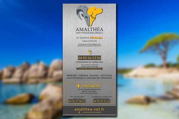 Plaque-veterinaire-Amalthea-photo