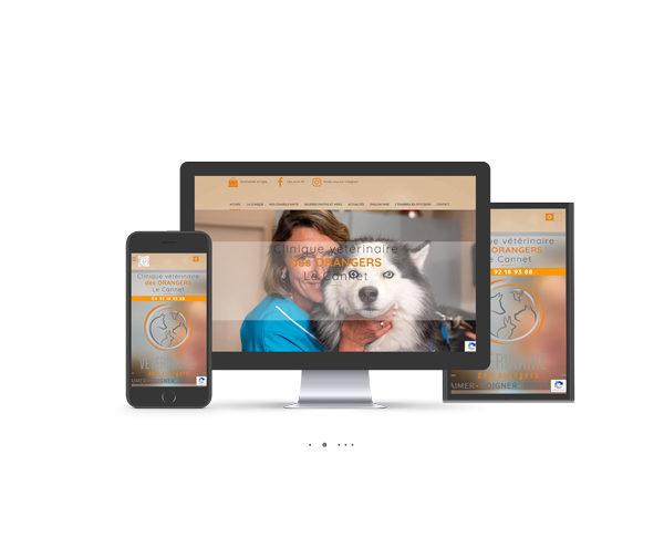 Sites Internet. Communication vétérinaire