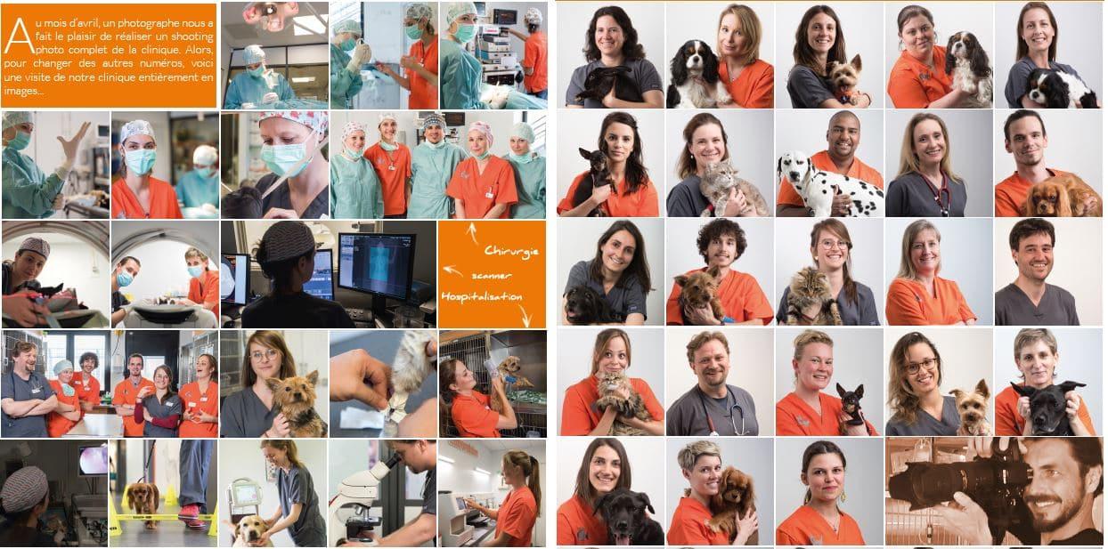 Shooting clinique vétérinaire des HUTINS - Avril 2019