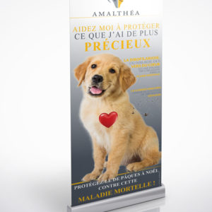 Kakemono-veterinaire-Amalthea-Dirofilariose