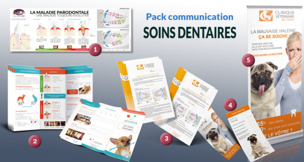 Pack-soins-dentaires-pour-veterinaires