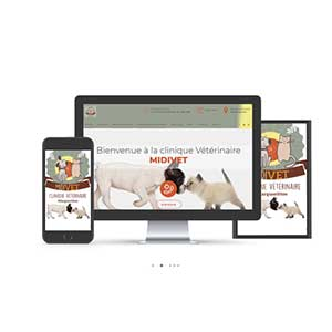 site internet veterinaire vetaction midivet