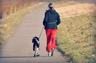 Jogging avec son chien