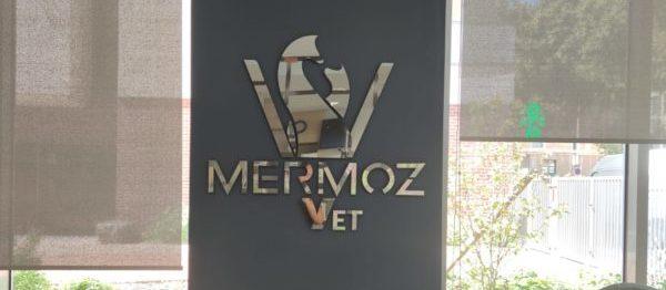 Logo Mermoz miroir