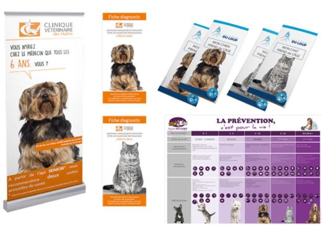 Services-bilans-senior-pour-vétérinaires-Vetaction-conseil-pack-communication