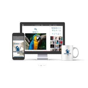 Site Internet Mermoz Vet