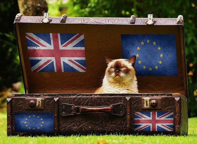 Brexit Chat